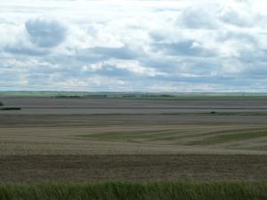 Look, Saskatchewan!